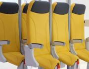 Авиакомпаниям предложили возить пассажиров стоя