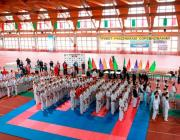 «Сакура над Сожем»: столинские каратисты вернулись с медалями