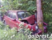 Пенсионер из Пинска врезался в дерево