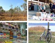 Давид-Городок снова удивляет, экологи сражаются за «Ольманские болота», кража водки у односельчан, арестованные велосипеды