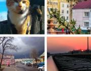 Весенняя рапсодия в Instagram, или 14 мгновений ушедших дней