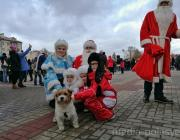 Отменённые новогодние гуляния в Пинске пройдут 27 и 28 декабря