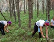 Черника поспела. В Ольманских болотах задержаны первые нарушители границы
