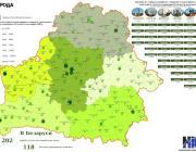 В Пинске земля дороже, чем в Могилёве