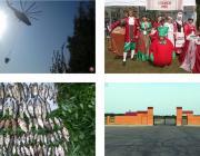 Фестиваль клюквы, кладбище без покойников, мешки рыбы и лесной пожар