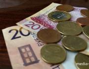 Какие организации на Полесье могут оставить своих работников без пенсии