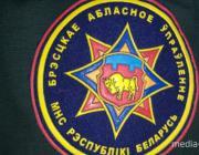 В Пинском районе в своём доме сгорел человек