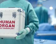 Маці супраць трансплантолагаў: Органы важней за жыццё?