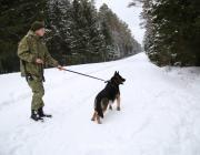 Пинские пограничники задержали иностранного легионера
