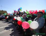 70-летие Победы в Микашевичах. Как это было