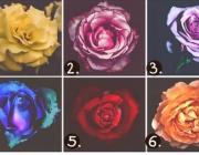 Выбери самую КРАСИВУЮ розу, и мы отгадаем ваш характер
