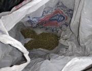 Пинчанин поехал в Брест, там его задержали с наркотиками