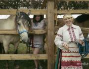 Запланированный на 17-18 августа в Ремле фестиваль лошади переносится