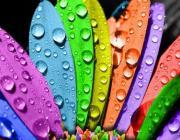 Ваш месяц рождения имеет свой цвет – узнайте, что это значит для вас