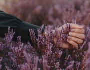 Рецепт счастливой жизни в 13 жемчужинах мудрости