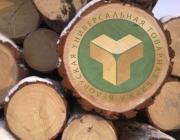 Годовые торги древесиной стали самыми крупными за всю историю их проведения