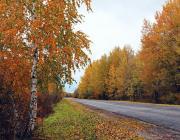Осень в фотоснимках Василия Веренича