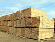Беларусь начнет поставки лесопродукции в Австрию