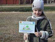 Лунинчан приглашают посадить липы в сквере семейных деревьев