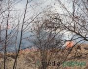 Весенние палы травы возобновились