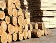 Якобсон: Предприятия деревообработки срывают сроки модернизации производств