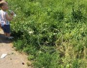 Двухлетний малыш во время прогулки по минскому парку провалился в открытый люк