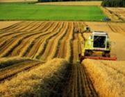 Лукашенко: Неэффективные предприятия АПК будут приватизированы