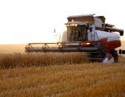 В Лунинецком районе два хозяйства завершили уборку зерновых и зернобобовых