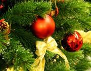 Открытие главной ёлки района состоится 14 декабря