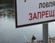 Любительское рыболовство на реке Горынь ограничено