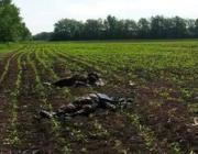 В бою под Волновахой в Донецкой области погибли 16 человек. В Волынской области объявлен траур