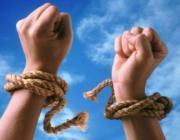 Оплаченная свобода. Бизнесмены смогут застраховать себя от «посадок»