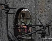 «Холокост на Пинщине» глазами художников