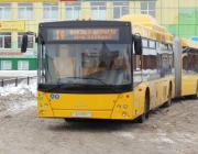 Школьники в Брестской области смогут бесплатно ездить в городских автобусах