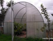 Поликарбонатные теплицы – гарантия высоких урожаев!