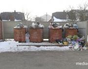 Опрос: нужны ли городу контейнеры для мусора?