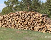 Турско-Лядецкого лесничества в Столинском районе больше нет