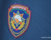 Мать и сын погибли на пожаре в Пинском районе