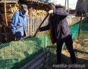 Перекопали огороды, сложили дрова: как молодёжь и спасатели помогали пожилым