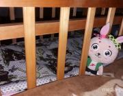 Кроватки для малышей нашлись за день
