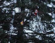 Фотофакт. В Давид-Городке ёлку украсили детскими тапками