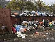 Как Беларусь может выиграть на мусоре?