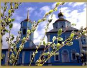 Православные встречают Вербное воскресенье