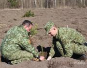 Военнослужащие Пинского пограничного отряда приняли участие в «Неделе леса»