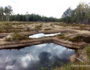 Разработка карьеров в «Ольманских болотах» велась незаконно