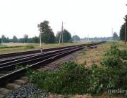 В Пинском районе под колёсами грузового поезда погиб 54-летний мужчина
