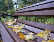 Потеплеет, пойдут дожди: какая погода ждёт в выходные