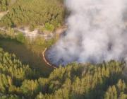 Пожар на болотах под Столином локализовали