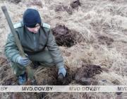 260 снарядов, гранат и мин нашли под Пинском
