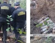 Боеприпасы, словно грибы собирают